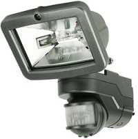 Intruder Security light